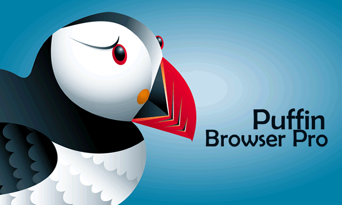 Puffin Browser Pro v6.1.1.15962
